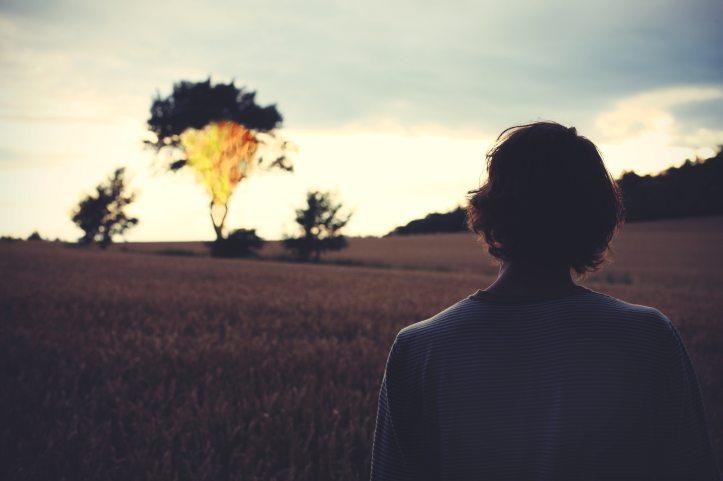 alone-backlit-burn-256963