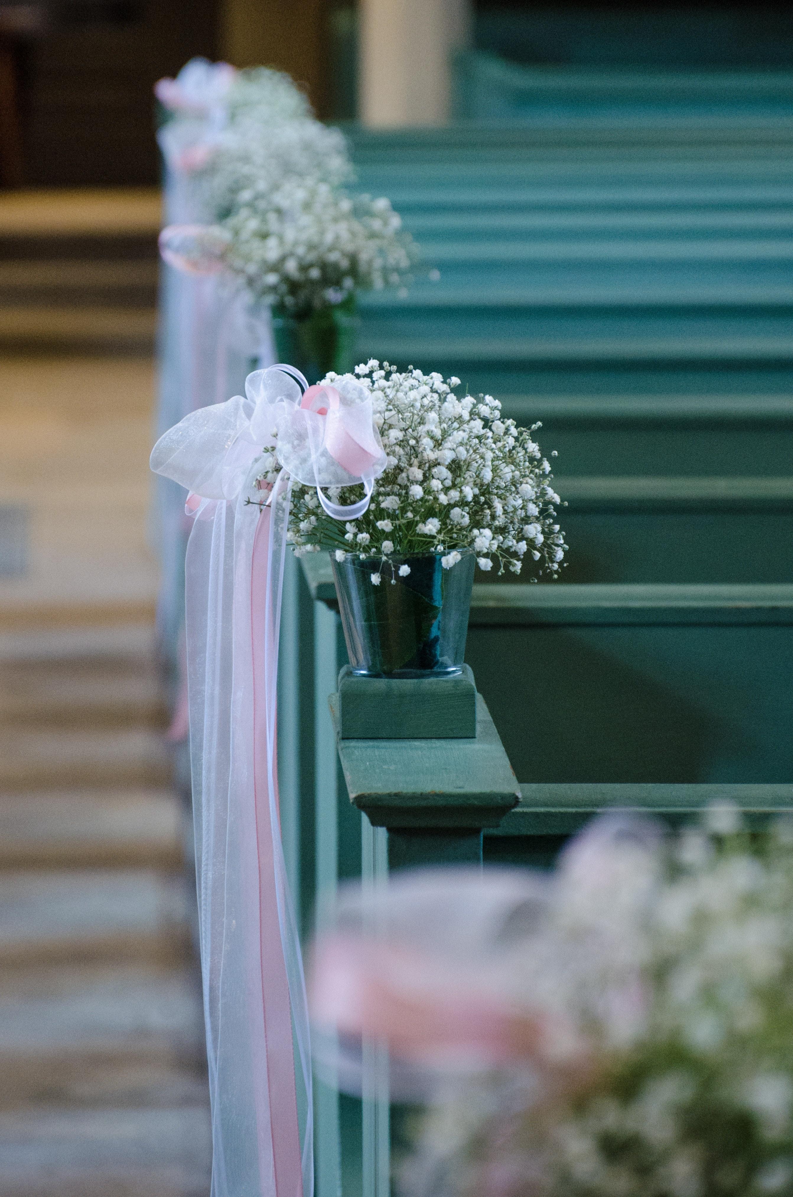 bloom-blossom-blur-265836