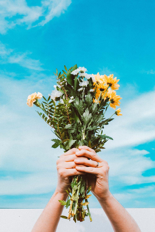 beautiful-clouds-flower-bouquet-2106037